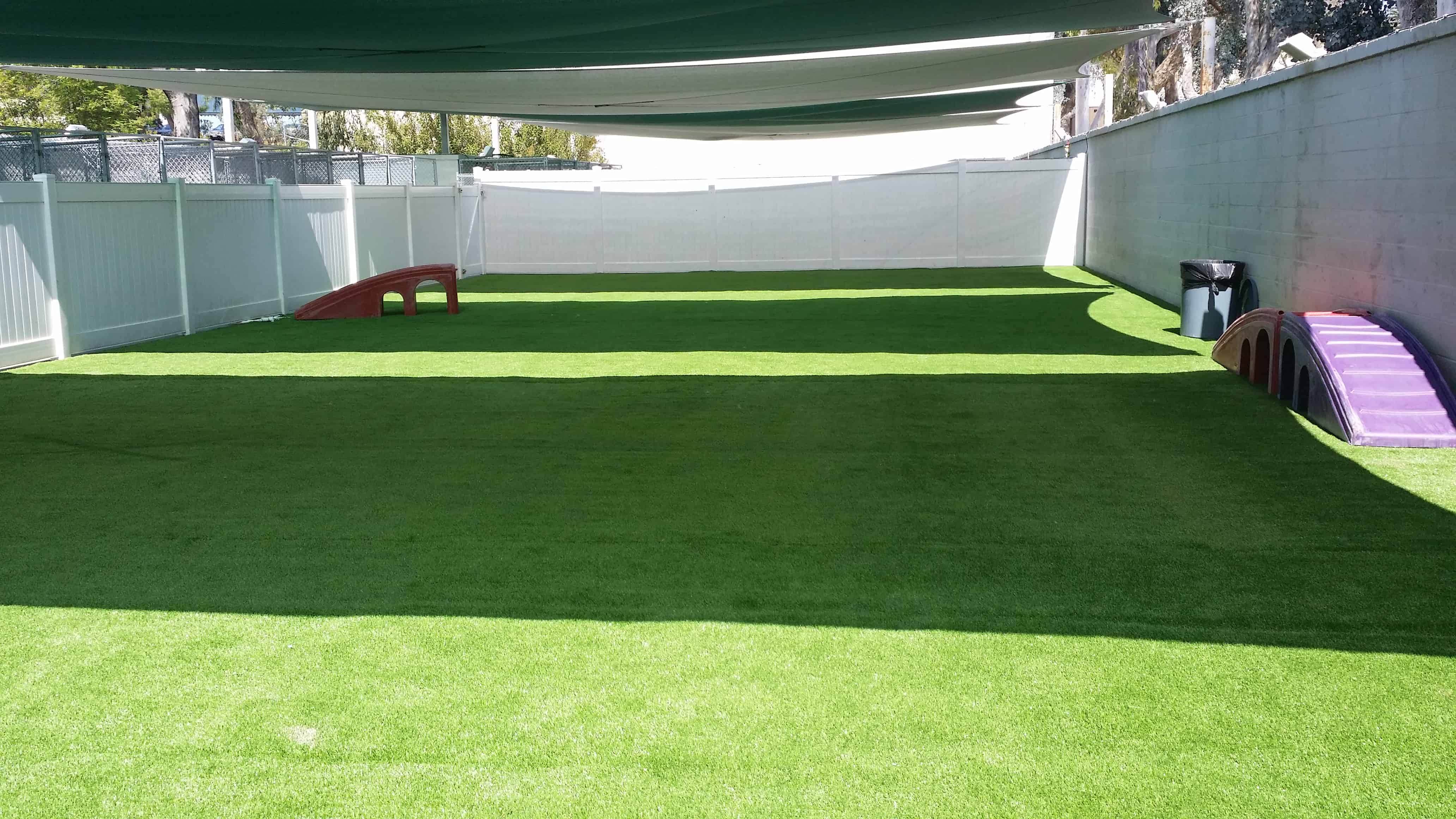 The Top 3 Reasons Why More Pet Resorts Choose Artificial Turf